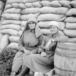 The Brave Nurses of World War I