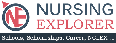 Nursing Explorer