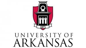 University of Arkansas: BSN, RN to BSN, MSN, FNP